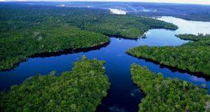 FAO fecha parceria para defender recursos naturais na Amazônia