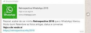 """Mais de 330 mil pessoas caíram no Golpe """"Retrospectiva do Whatsapp 2018"""" 1"""