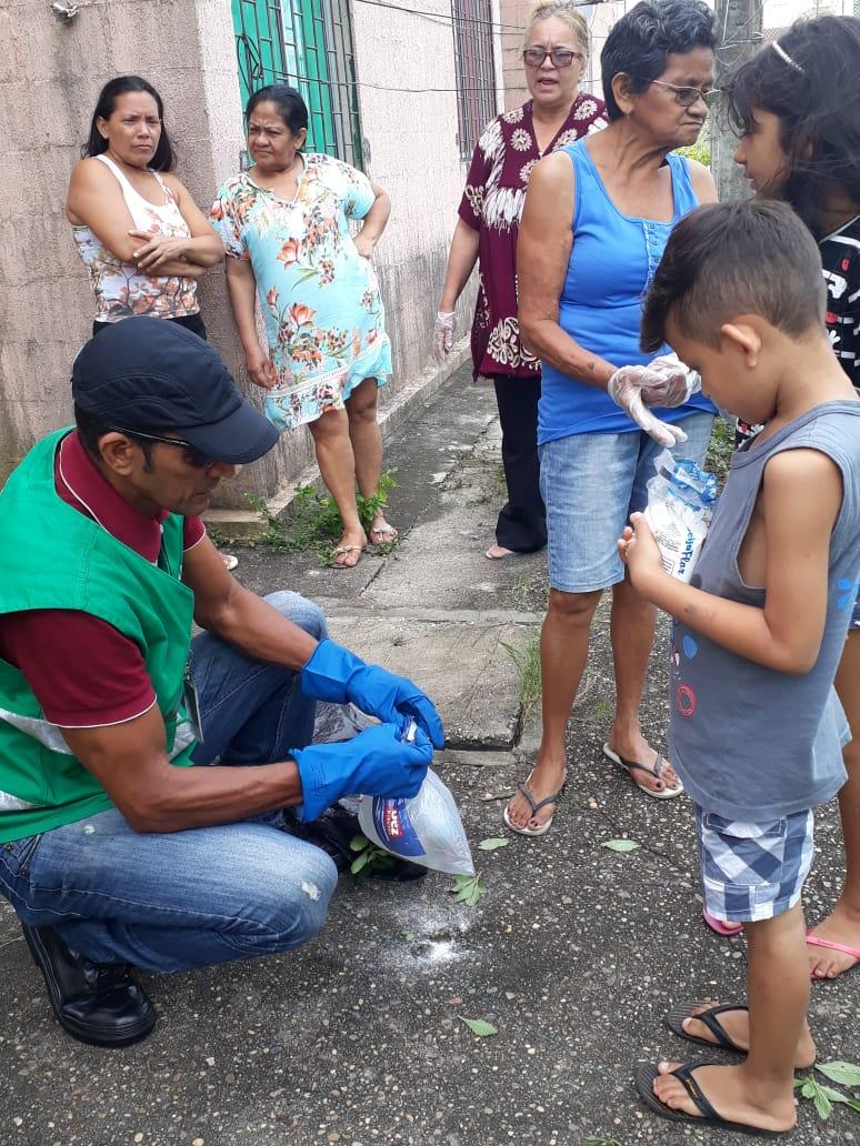 Prefeitura de Manaus realiza formação de brigada contra caramujo africano no Petrópolis