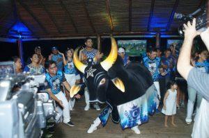 Caprichoso celebra tradição nas ruas com apoteose na Praça dos Bois