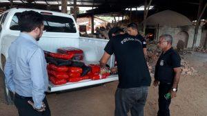 Polícia incinera 37 kg de maconha em Jutaí, no Amazonas