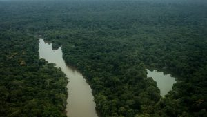 Amazônia perdeu 18% da área de floresta em três décadas, aponta pesquisa