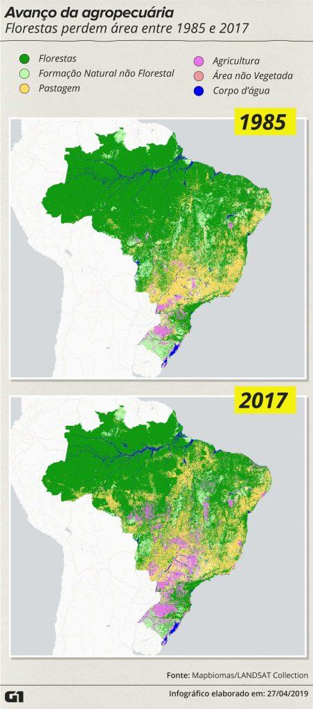 Amazônia perdeu 18% da área de floresta em três décadas, aponta pesquisa 1
