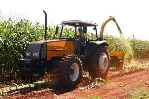 Brasil esta no segundo lugar do ranking de maior exportador mundial de milho