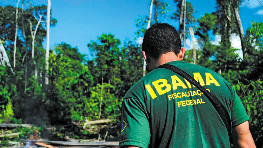 Ibama intensifica campanha de proteção de animais durante Festival de Parintins