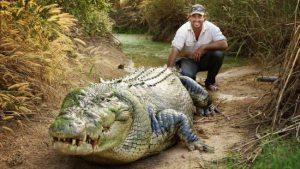 Aventureiro corre para escapar de crocodilos em vídeos assustadores; assista!