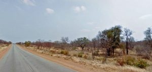 Leopardo mata criança em parque na África do Sul