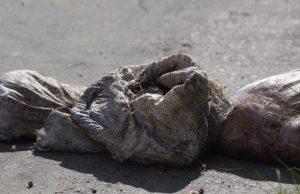 Corpo é encontrado esquartejado com a sigla FDN, em Manaus