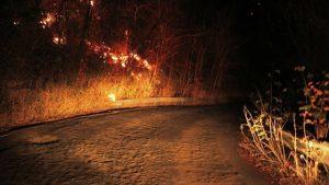 Área verde pega fogo e assusta moradores da zona Leste de Manaus