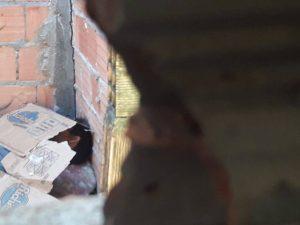 Homem do regime semiaberto é morto por dívida com o tráfico de drogas, em Manaus