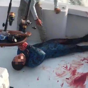 Um mergulhador é atacado por tubarão na Florida; Confira o vídeo!
