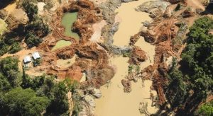 Desmatamento dispara no Xingu, um dos últimos 'escudos' da Amazônia