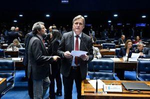 Senado aprova inclusão de universidades comunitárias em escolhas para o CNE