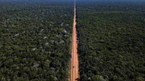 Governo Bolsonaro autoriza obras na BR-319 com início previsto para este ano
