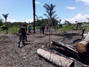 Policiais Militares do 4° GPM – Urucará/2°BPM e Polícia Civil fazem a detenção de  dois homens por crime ambiental no município de Urucará
