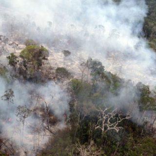 Fogo proibido por 120 dias no Brasil, decreta governo federal, nesta quinta-feira