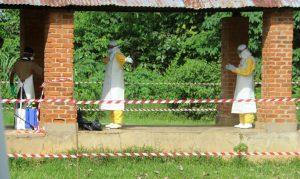 Vírus antigo volta ameaçar humanidade, ebola tem quase 50 casos confirmados