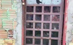Criança de 8 anos morre ao ser atingida por tiro durante assalto em Manaus