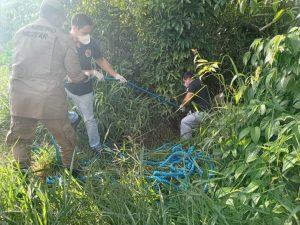 Corpo é encontrado em área de mata em Manaus