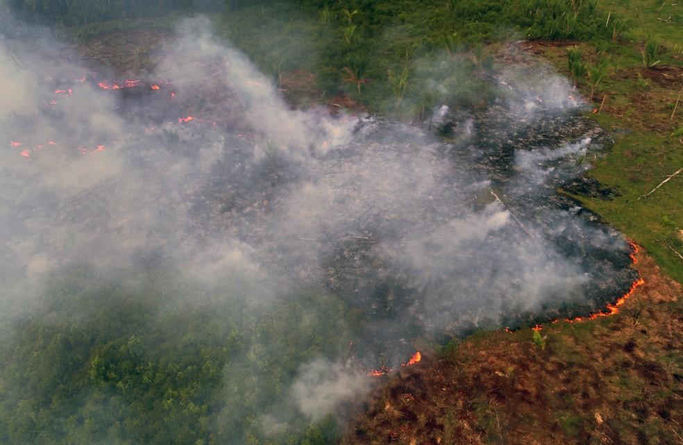 Ministério da Justiça autoriza uso da Força Nacional para apoiar ações de fiscalização do Ibama na Amazônia